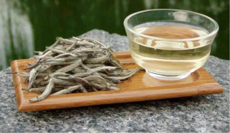关于白茶,你了解多少?